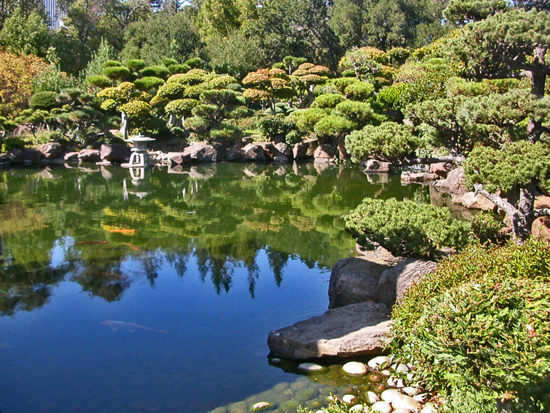 visiting the Japanese Garden in Hayward, California --- #5 of 10 Our ...