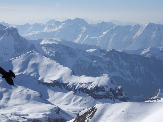 view from Piz Gloria Schilthorn Swiss Alps