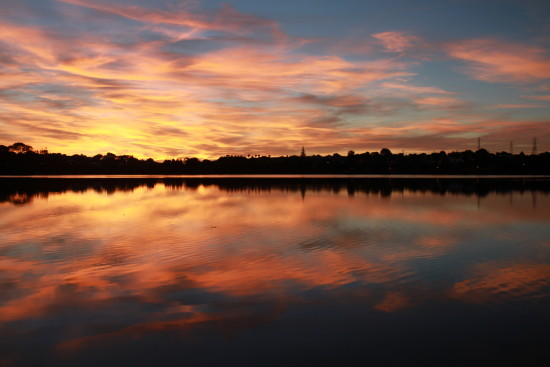 reflectionthursday sunrise panmure basin