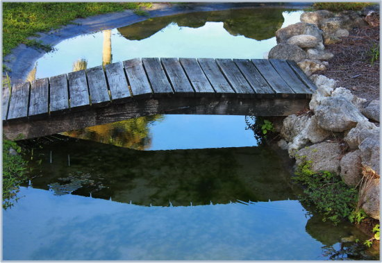 bridge reflectionthursday