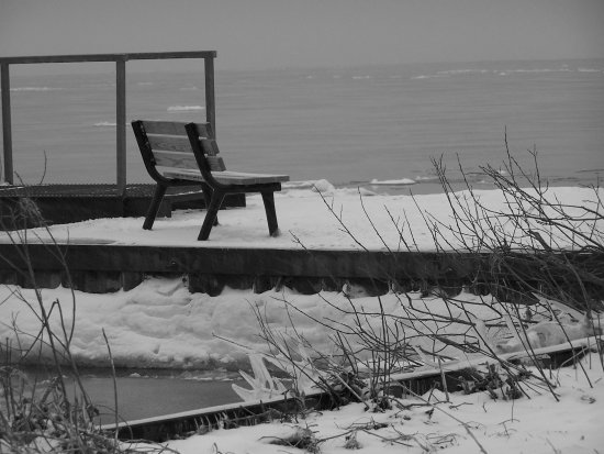bench lakeside winter ontario beach lake erie