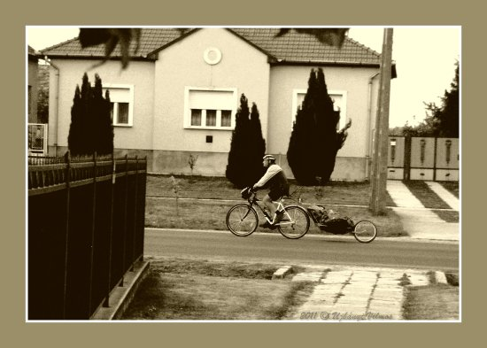 cycling bike road house fence windows gate monochrome sepia