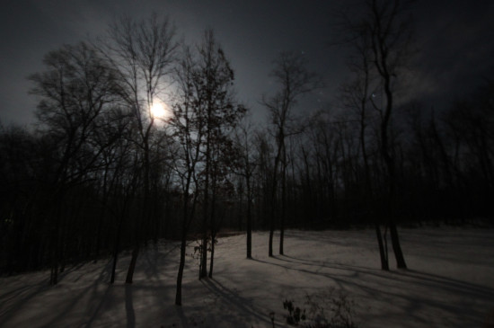 A bit fuzzy but such a beautiful moonlit night.  I should have taken out the tri-pod but I stood ...