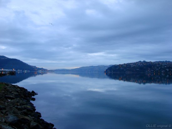 reflectionthursday old favourties otago harbour dunedin littleollie