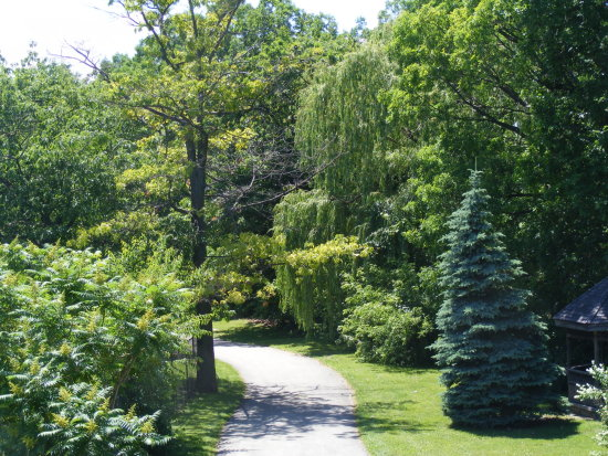 trees path nursinghome Niagara Canada