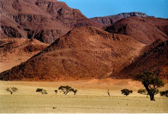 Namibia, taken by a friend with a keen eye for stunning pics