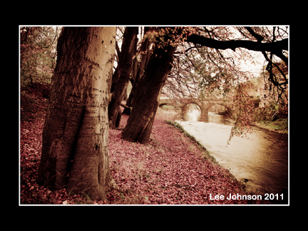 Landscape Autumn Calder River Bridge Trees Spideyj