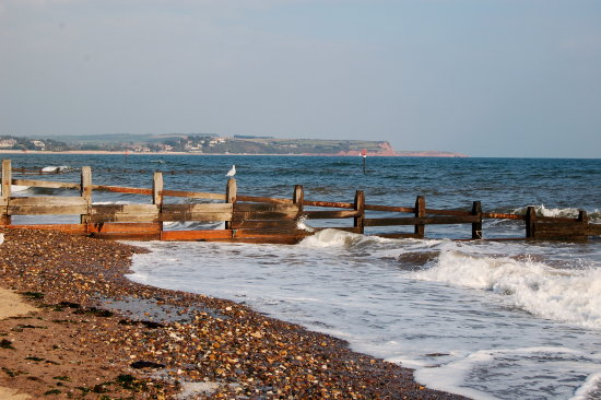 dawlish warren devon coast exmouth sea