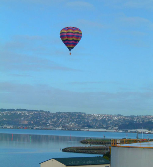 hot air balloon otago harbour morning calm dunedin littleollie