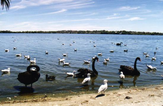 More from Perth 2/5