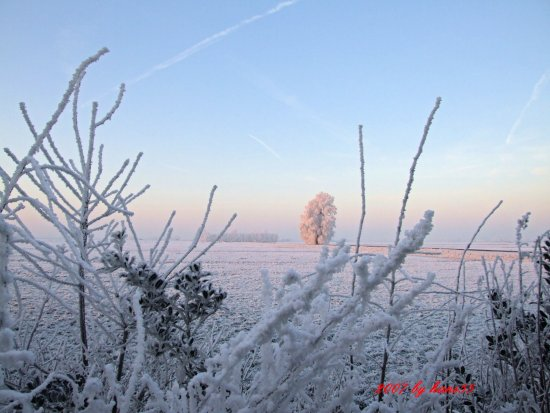 holland winter