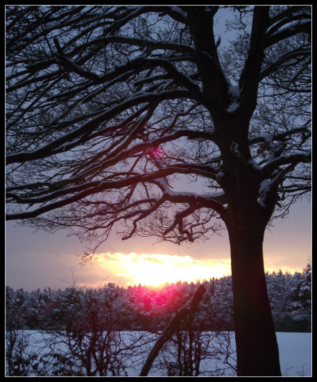 saffi9 snow sunset