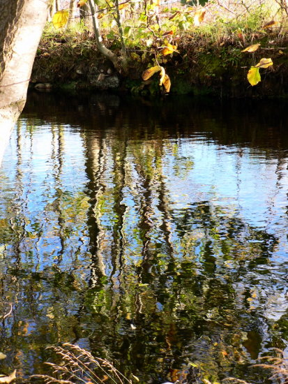 Time for reflections on the Canal waterway for the old Mill,