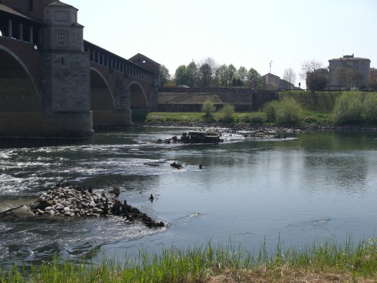 "The so-called ""Covered Bridge"", in Pavia, crossing the Ticinum river. The place I took the photo ..."