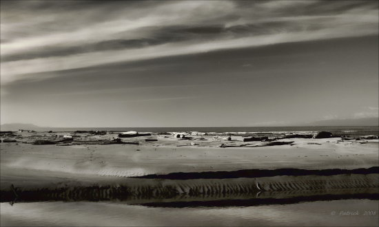 Seascape Saltcreek cresent beach BW blackandwhite