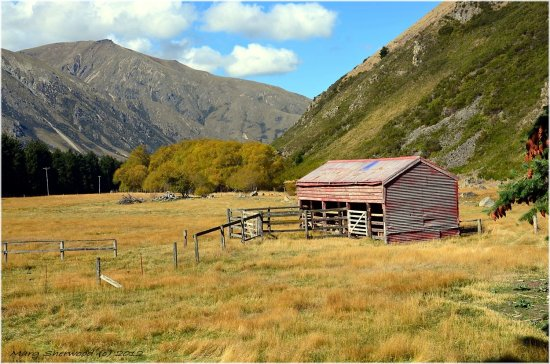 farm buildings newzealand