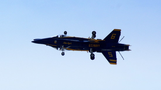 Blue Angels NAS Dallas Pankey Wildspirit Aircraft