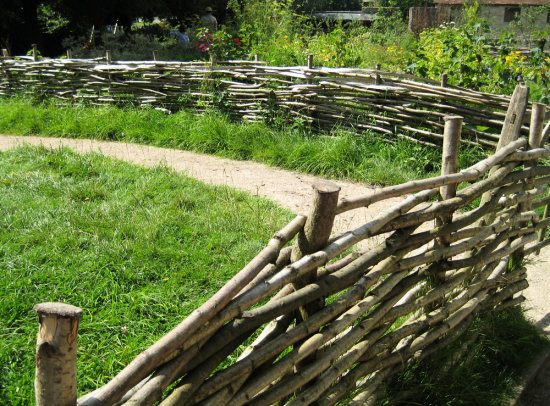 Superbe 9. ........the Fence Round The Vegetable Patch