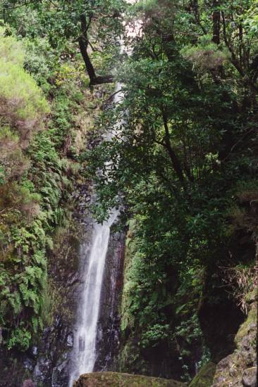 compnature Madeira island Portugal waterfall cold 2005