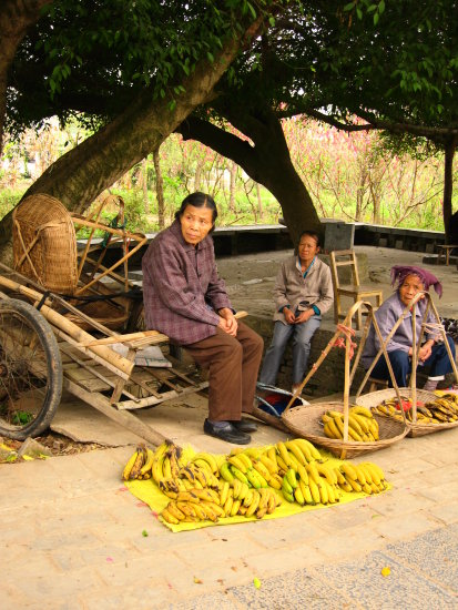 Old ladies, residence of Yangmei selling bananas from their own crops