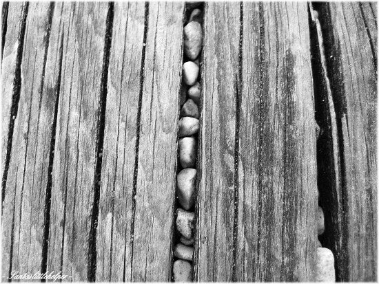 macro bench pebbles