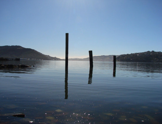 reflectionthursday otago harbour memories home calm dunedin littleollie