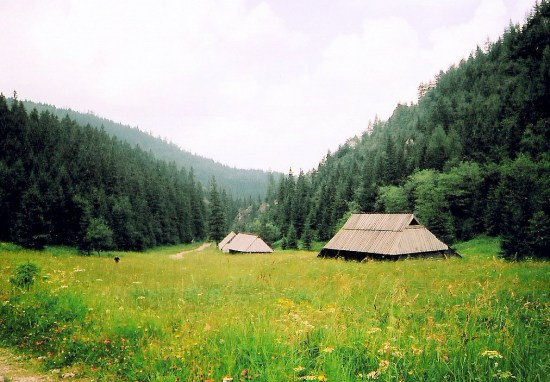 somewhere in the beginning of my walk :-)/Jaworzynka Valley, Poland