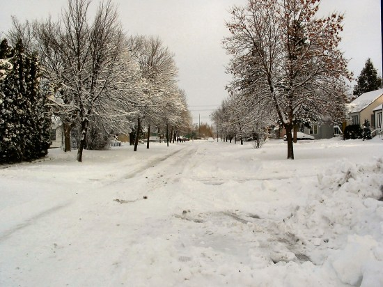 winter Winnipeg Canada