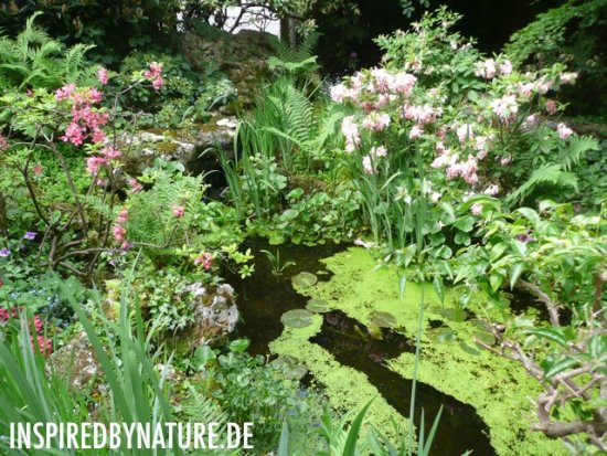 private garden company inspired by nature munich exclusive