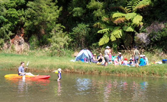 Summer Picnic in New Zealand