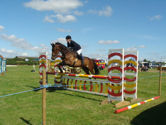 Ashby show horse jumping