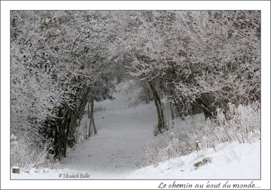 First Day of Winter from Auvergne