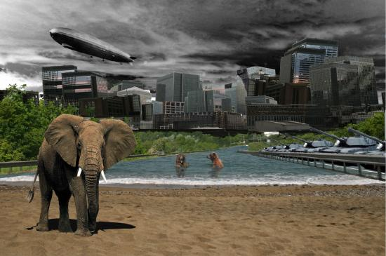 elephant city art photoshop beach tank zepplin