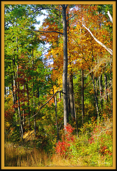 deep south autumn pankey wildspirit landscape touch hdr