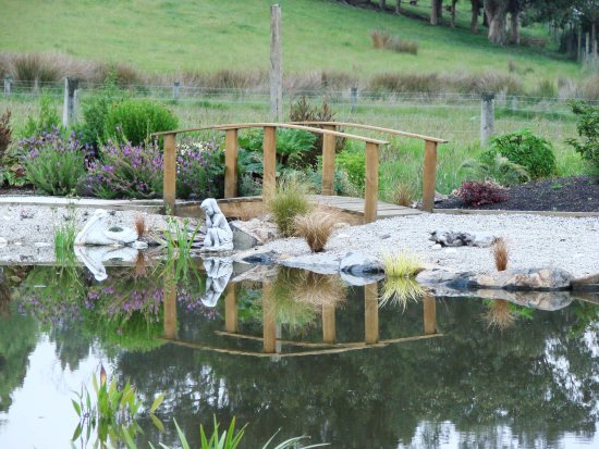 reflectionthursday east taieri home dunedin New Zealand littleollie