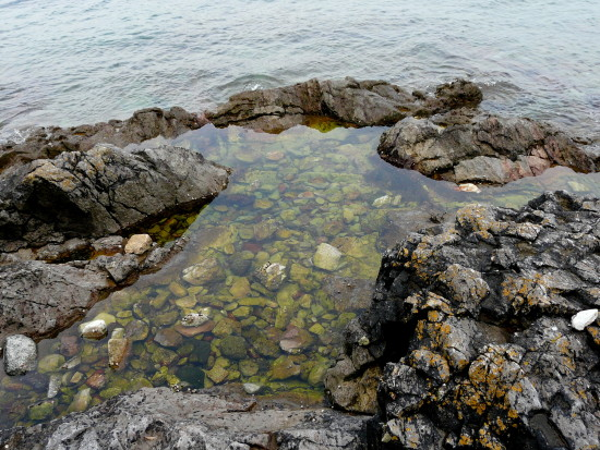 rockpool mount edgecombe plymouth