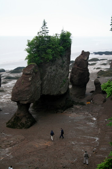 its a different world at bay of fundy