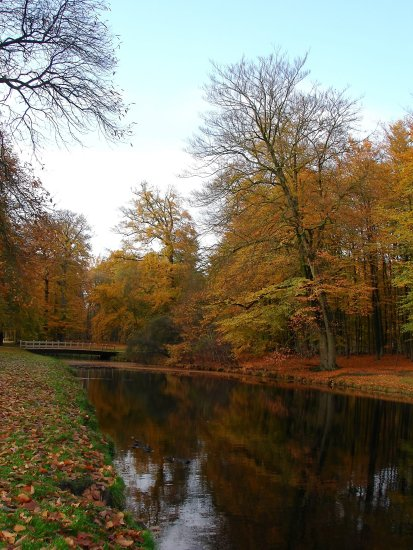 netherlands vuursche autumn water tree nethx vuurx waten autux treex