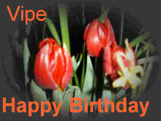 Vipe Birthday Wishes