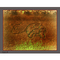 Turtle engraving in rock- in Gozo (sister island of Malta) cumbu 24