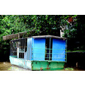 zuiderdam cruise puertolimon costarica jungle boat houseboat river