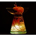 beet root glass light