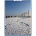 footprint ice snow winter januari landscape nature holland CH1988