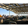 alaska ferry solarium deck lounging chairs