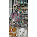 jewelry jewelryfph shop window reflections reflectionthursday toys