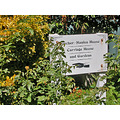 benicia beniciafph capital garden sign signfph summer