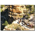 usa arizona grandcanyon view landscape usax arizx granx canyu landu viewu
