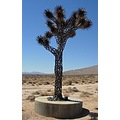 metalsculpture welding joshuatree ridgecrest