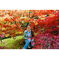 ireland parks Autumn Colors lady girl model