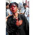 ashura lucknow 10th day of moharam shiasm
